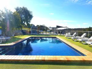 The swimming pool at or near Clare Valley Motel