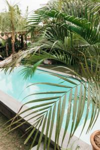 The swimming pool at or near Dreamsea Canggu