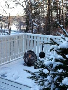 Det Vita Huset during the winter
