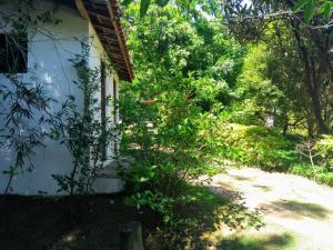 A garden outside Chácara do Delei