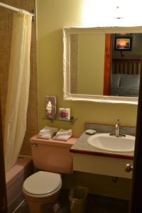 A bathroom at North Star Motel