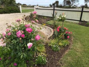A garden outside Moonlight Bay B&B Guest House