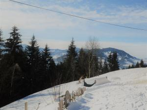 Reichartsberg im Winter