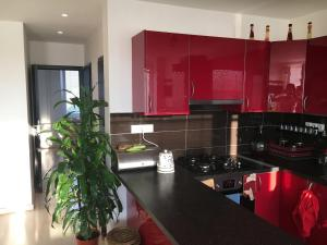 A kitchen or kitchenette at HOMERENT LARGE wHIGH STANDARD near SUBWAY st.