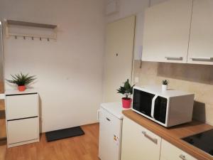 Кухня или мини-кухня в Zatvoreny Downtown Apartment Bianca