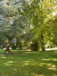 Jardin de l'établissement Domaine de Chaligny