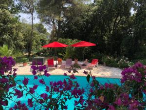 A view of the pool at Villa La Pastorale or nearby
