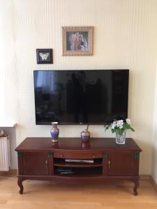 Телевизор и/или развлекательный центр в Apartment on Malaya Posadskaya