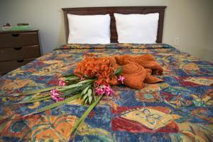 Cama ou camas em um quarto em Joy apartments Grote Berg! Close to the best beaches
