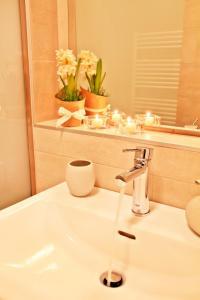 Koupelna v ubytování Apartments New Karolina Superior