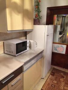 A kitchen or kitchenette at Vasile Alecsandri 60 ap 49
