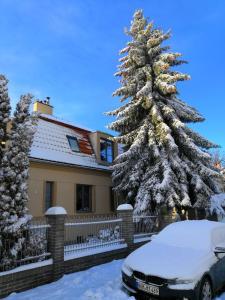 Vila Krocinka during the winter