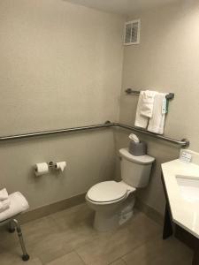 A bathroom at Holiday Inn Express Memphis Medical Center - Midtown