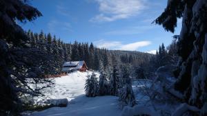 Penzion Jezirko v zimě