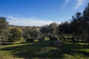 A garden outside Agriturismo Echi d'Etruria