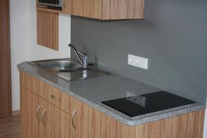 A kitchen or kitchenette at Pension Mair