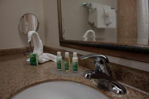 A bathroom at Caribe Hotel Ponce
