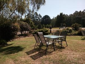A garden outside Tarra Bulga Guesthouse