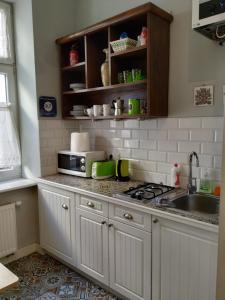 Kuchnia lub aneks kuchenny w obiekcie Krakowsky Apartment