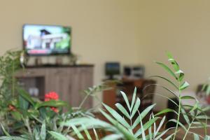 TV o dispositivi per l'intrattenimento presso Nana's Home