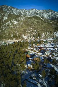 A bird's-eye view of Usadba U Grishaevykh