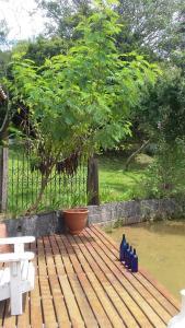A garden outside Sitio Vale das Flores