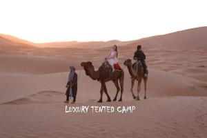 Horseback riding at the luxury tent or nearby