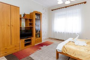 TV a/nebo společenská místnost v ubytování Almafa Apartmanház