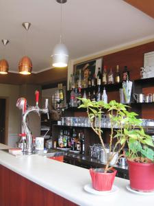 The lounge or bar area at Hotel Restaurant Rive Gauche