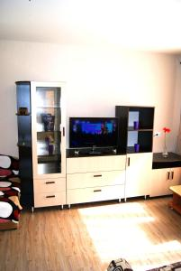 A television and/or entertainment center at Apartment Irina