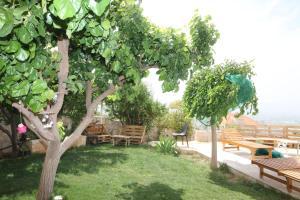 A garden outside Beit El Kroum Boutique Hotel