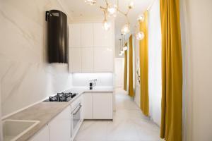 Kuchyň nebo kuchyňský kout v ubytování Dalí Wenceslas Square Apartment