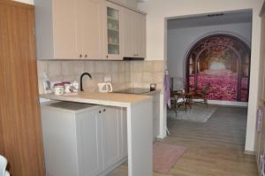Kuchyň nebo kuchyňský kout v ubytování Domek na Betlémě