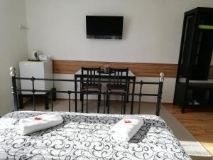 TV a/nebo společenská místnost v ubytování Penzion V Hájku