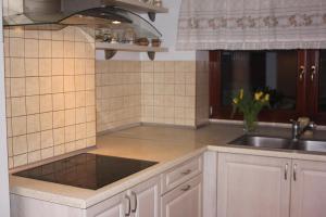 A kitchen or kitchenette at Dąbrowski