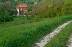 Сад в Kamp Jankovic