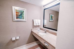 A bathroom at Fairfield Inn by Marriott Medford Long Island