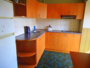 Cuisine ou kitchenette dans l'établissement Furnished Apartments on Sovetskaya