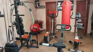 The fitness center and/or fitness facilities at Apartments Bogdanovic