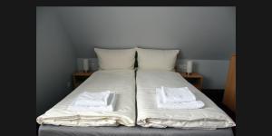 Łóżko lub łóżka w pokoju w obiekcie Apartment A'la Karol