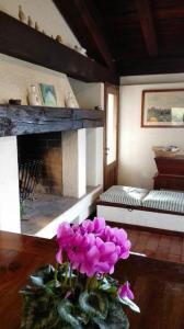 A bunk bed or bunk beds in a room at La Rovaia, natura arte e terra del prosecco a pochi minuti da Asolo