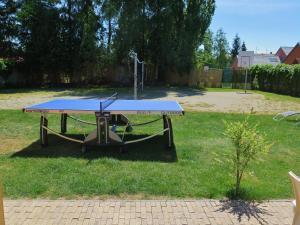 Stolní tenis v ubytování Buxusson Resort nebo okolí
