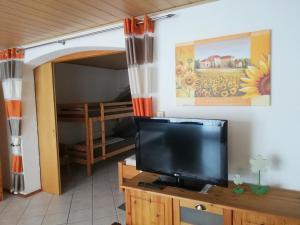 TV/Unterhaltungsangebot in der Unterkunft Ferienwohnung Ambiente am Europa-Park