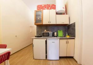 A kitchen or kitchenette at Apartments at Alexandrinsky Theatre