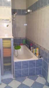 Koupelna v ubytování Apartment Smeralova
