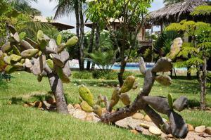Een tuin van Pousada Morada dos Ventos