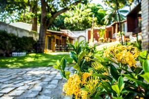 A garden outside Pousada Saruê Natal