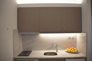 Kuhinja ili čajna kuhinja u objektu Studio Candia