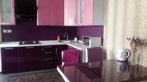 Кухня или мини-кухня в Apartment on ulitsa Roz 115 / 1
