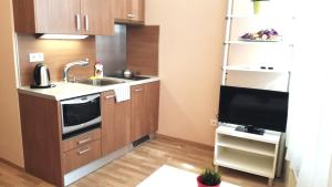 Кухня или мини-кухня в Downtown Apartment Jenny